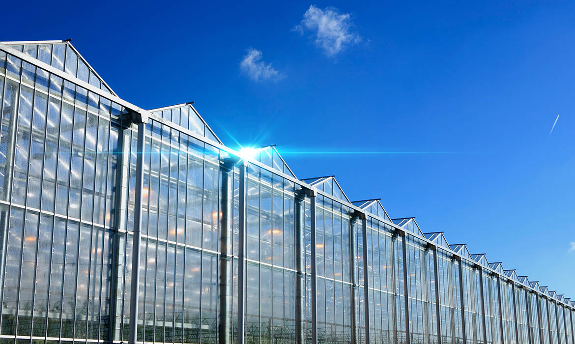 Modern Growing Greenhouses Fusion Properties Management
